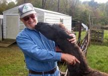 "The ""Old"" Farmer And Llama Keira"