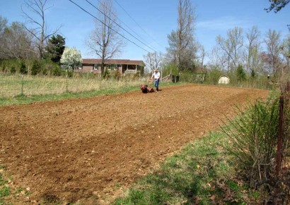 Freshly tilled dirt in garden.