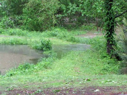 picture of flood water coming out of pond