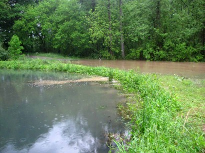 picture of muddy flood water getting into pond
