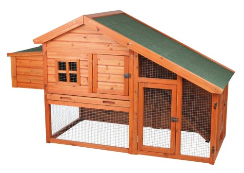 picture of backyard chicken coop