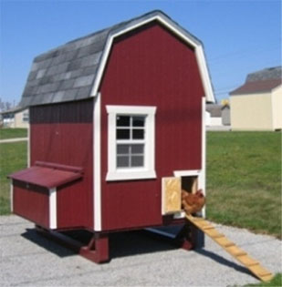 picture of red chicken coop